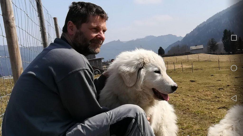 Alpakazucht-Steirerland-unsere-Tiere-Tierliebe4