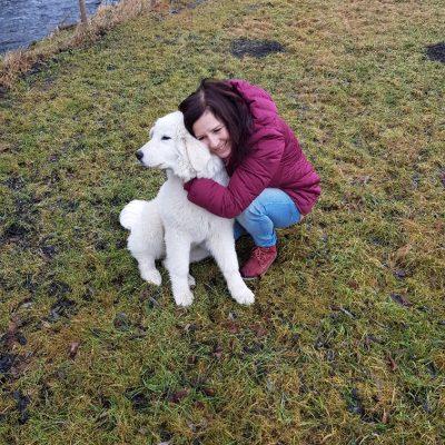 Alpakazucht-Steirerland-unsere-Tiere-Tierliebe1