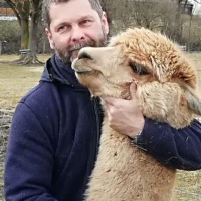 Alpakazucht-Steirerland-unsere-Tiere-Tierliebe2