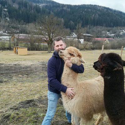 Alpakazucht-Steirerland-unsere-Tiere-Tierliebe3