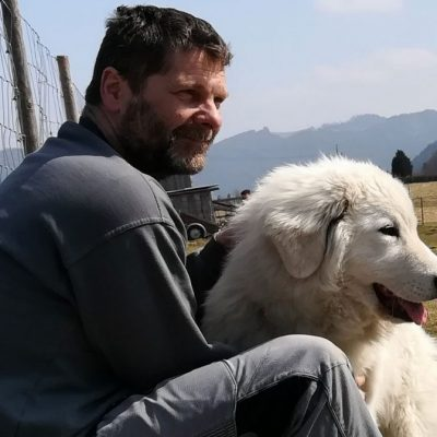 Alpakazucht-Steirerland-unsere-Tiere-Tierliebe6